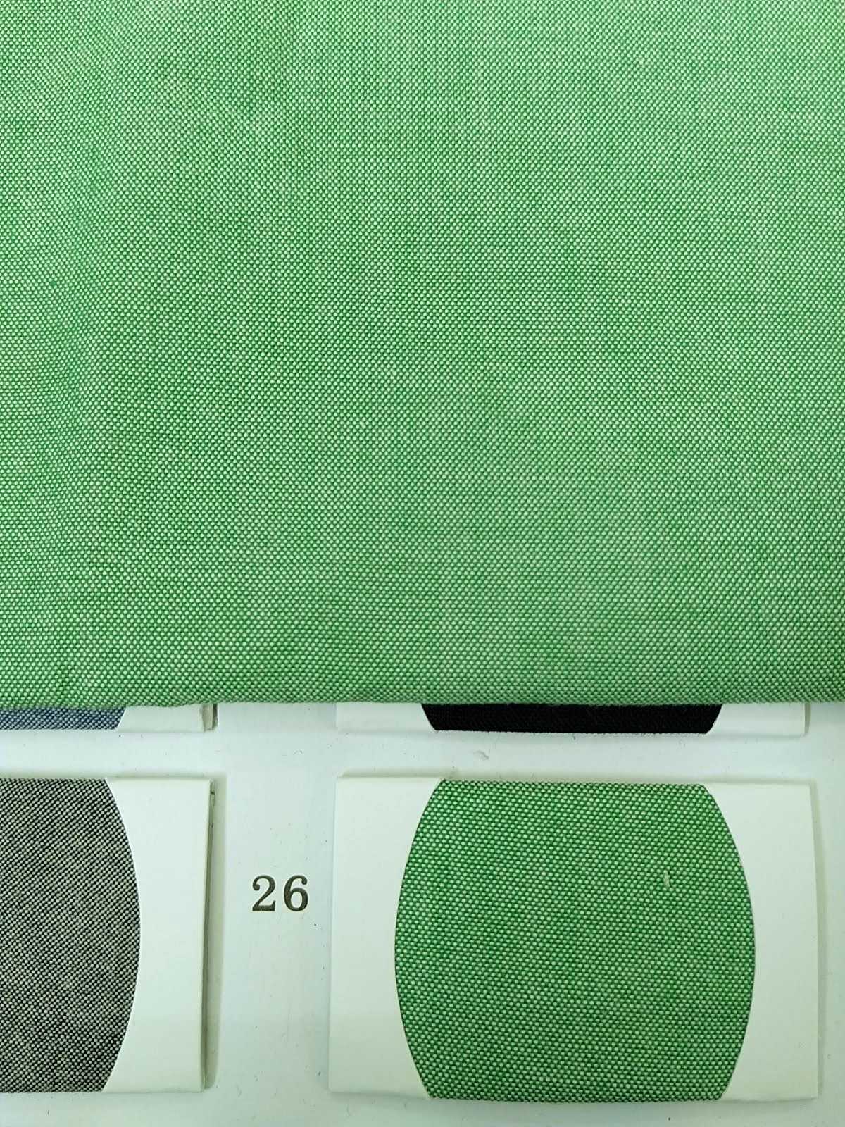 ผ้าแชมเบรย์สีเขียว